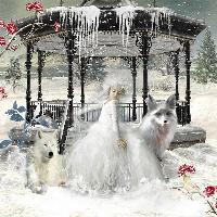 blanche neige 2
