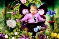 Joey....Little Butterfly Girl