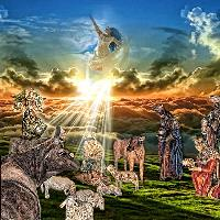 Beautiful Nativity Scene...