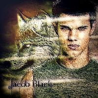 Twilight....Jacob Black