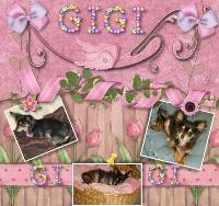 Gigi's 1st Scrapbook