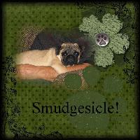 Smudgesicle