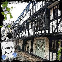 A Shrewsbury Street
