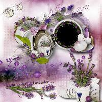 Lavender QP 1.....