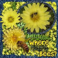 Where would we bee