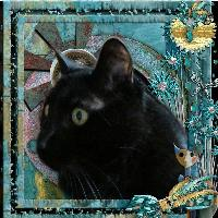 Gizmoh in portrait