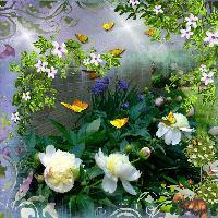 Granpy's Garden