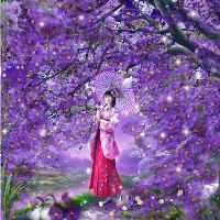 Asian violets