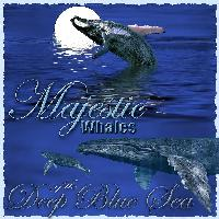 Majestic Whales