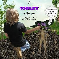 Flowers a Violet 02