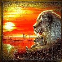 MajesticAnimals...The Lion..4