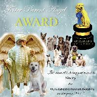 Foster Parent Angel