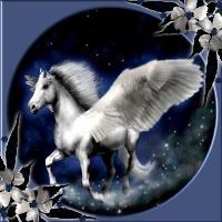 Pegasus stars