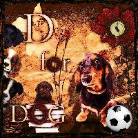 D for Dog (Animal Theme)