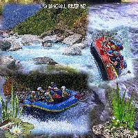 Whanganui River #6