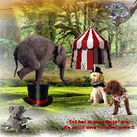** Odd holiday at the Circus Circus **