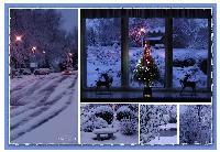 Wintery Wonders