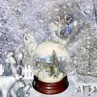wolf snow globe