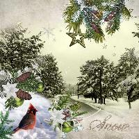 Snow 12-12