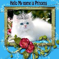 My Name Is Princess