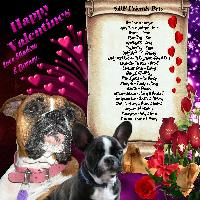 SBF Friends Pets Valentines