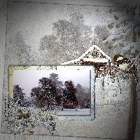 Winter in Botanical garden
