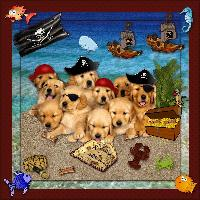 Pirate Puppies