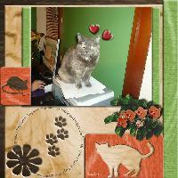 Kitty Love..
