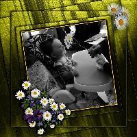 Mommie's favorite flowers - Daisies