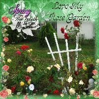 My Rose Garden #1