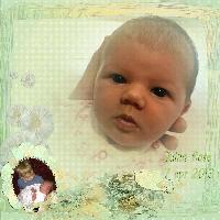 Quinn Rose 2