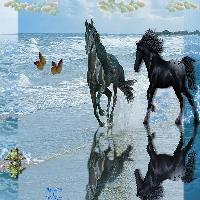 Dream Waves & Flying Horses....