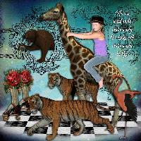Darcie's Wild Ride