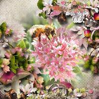 Bee-U-Tiful
