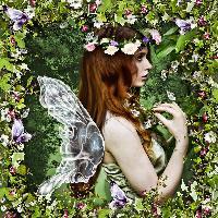 Beautiful Fairy Overlay...