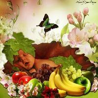 Fruit bowl baby