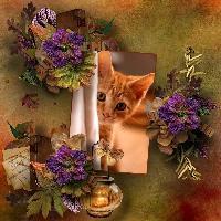 I Spy Autumn