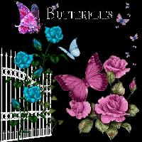 Butterfly Page