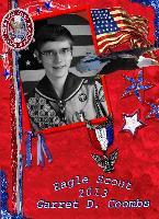 Soaring Eagle Scout~