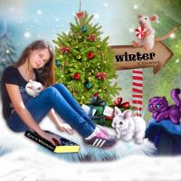 Winter to Wonderland