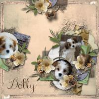 Dolly #2