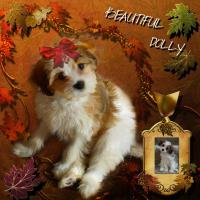 Beautiful Dolly