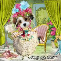 ~Dolly Antoinette~