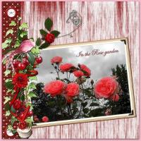 In The Rose garden !