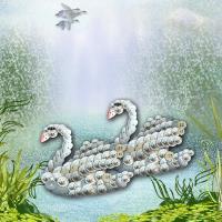 Button Swans