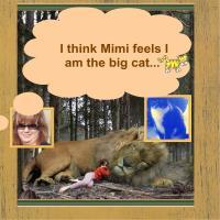 Mimi, the cat
