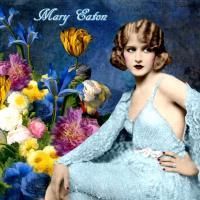 Colour Me ~Mary Eaton~