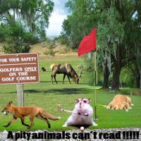 Animals can't read.