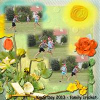 Summer Cricket - Xmas Day