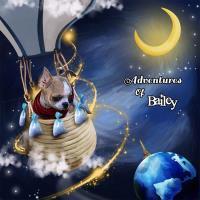 Adventures Of Bailey